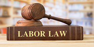 Compliance under Labour and Employment Law