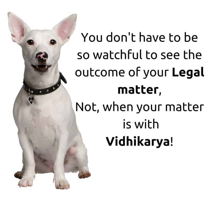 You do not have to be so watchful to see the outcome of your legal matter, not when your matter is with vidhikarya